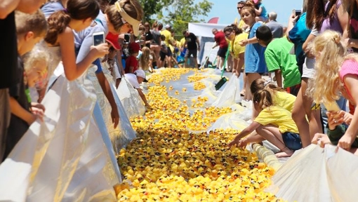 crowd of people watching rubber duck race